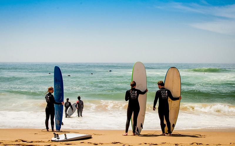 Surfkurse Organic Ericeira Portugal Ferien Surfen