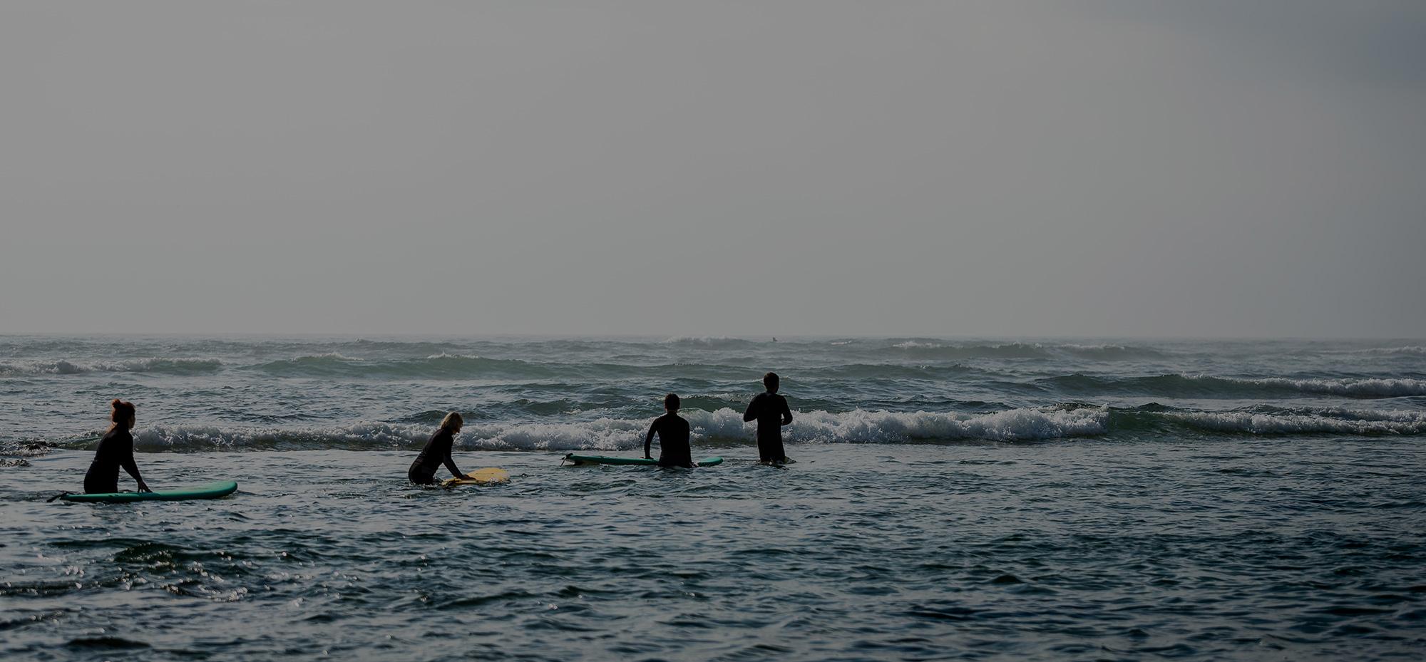 Organic São Julião Surfschule EN